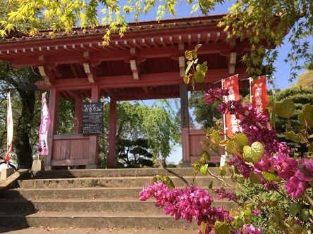 お寺カフェ2
