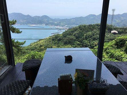 遠見茶屋5