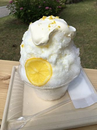 レモンと本7