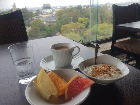 岡崎ニューグランドホテル10