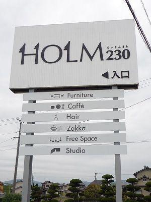 holm230.jpg