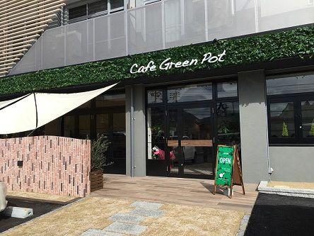 cafegreenpot1