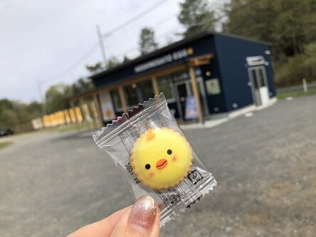 阪本鶏卵美星9