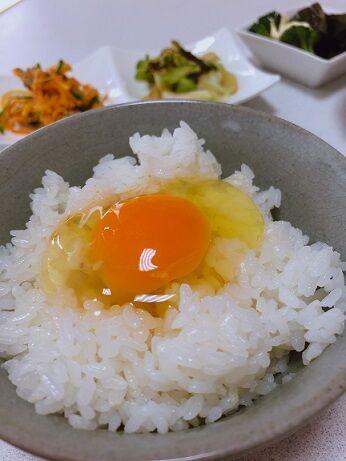 阪本鶏卵美星11