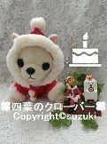クリスマス+ケーキ+かっこいい犬2