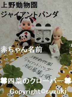 上野動物園ジャイアントパンダの赤ちゃん名前募集 2017年 2