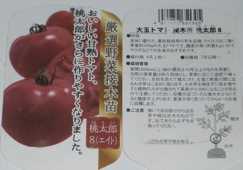 2021-04-26 桃太郎8