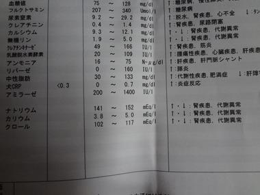 DSC06753