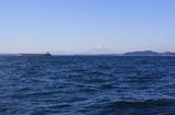 保田沖の富士