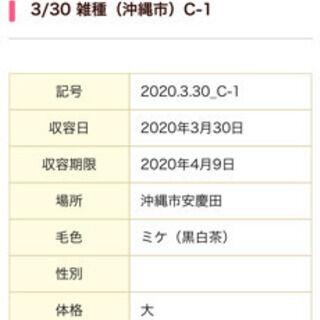 95C6C02C-F7D4-4327-A3B3-9A98671A8335