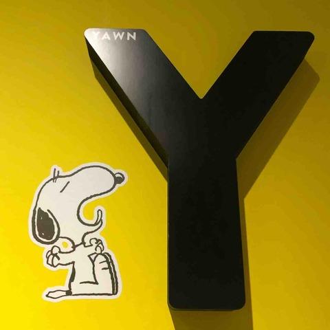 スヌーピーミュージアム展_装飾_Y
