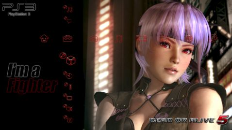PS3カスタムテーマ「DEAD OR ALIVE 5」