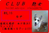 CLUB艶女