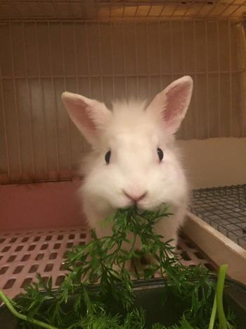 月太郎2歳
