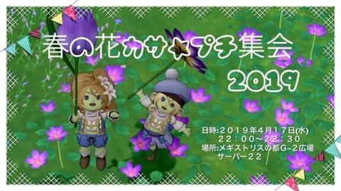 20190417春花カサ