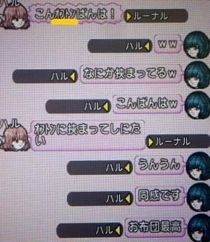20161103お布団最高
