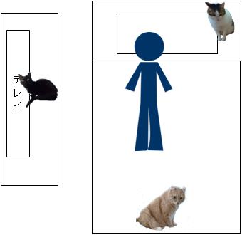 猫にゃんずの配置