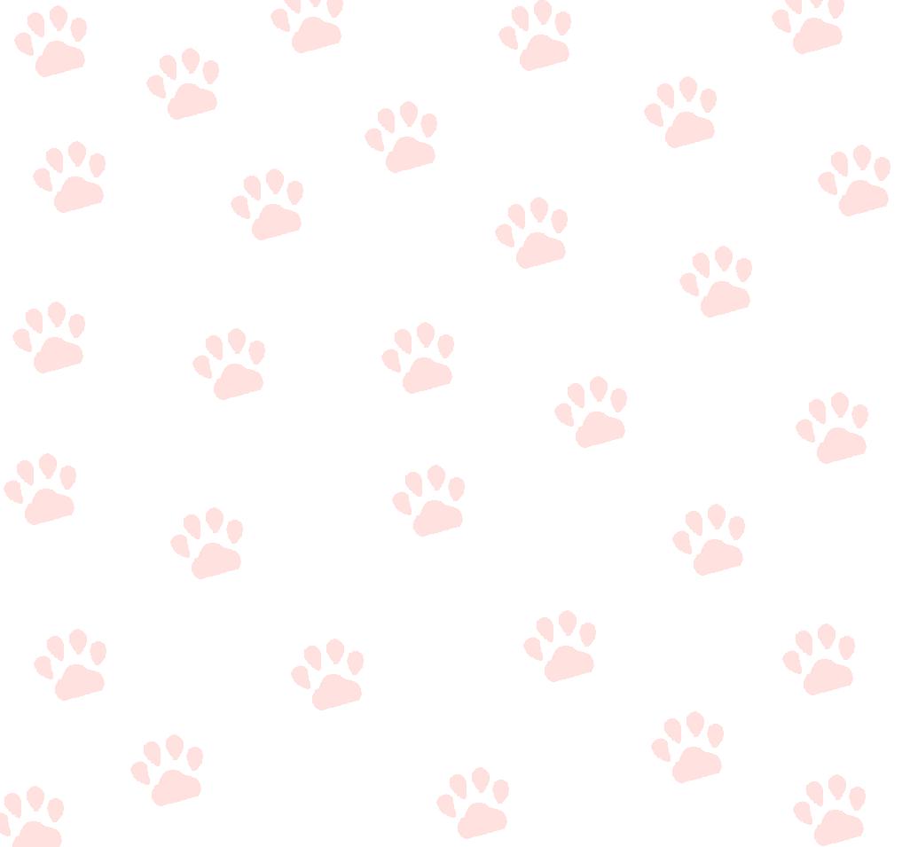 背景フリー素材 猫の肉球の背景を自作してみた よかったらご使用ください 我が家の猫にゃんず