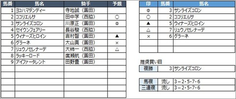 20200529園田2R
