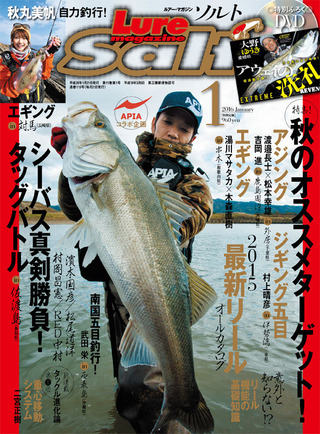 1501109_01_salt_hyoushi