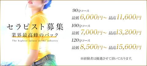 1000_450_業界最高峰のお給料01