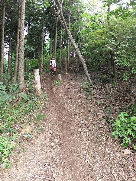 林道ツー (4)