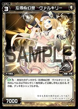 WD13-017-1