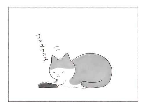20190608-1-1