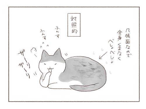 20190608-2-5