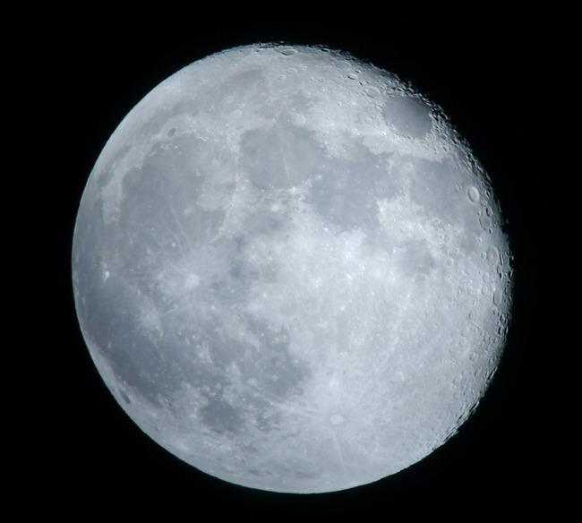 立待月の月