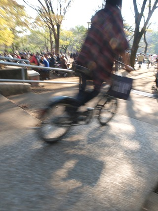 自転車ビューン。