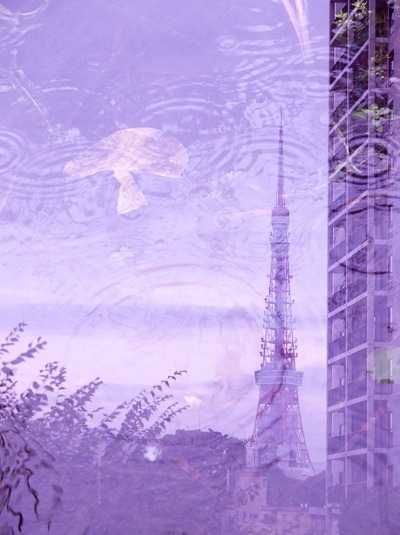 雨の東京タワー。