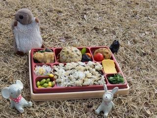 お弁当だよー!