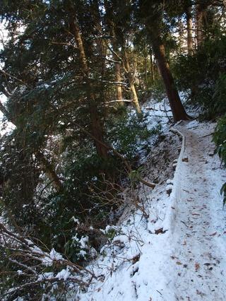 ひどく凍った坂道。