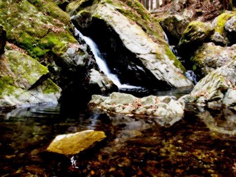 清水の川。