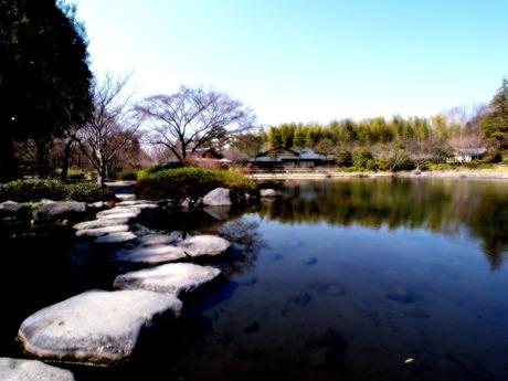 庭園の池。