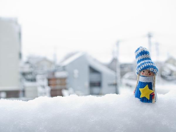 冬の妖精。