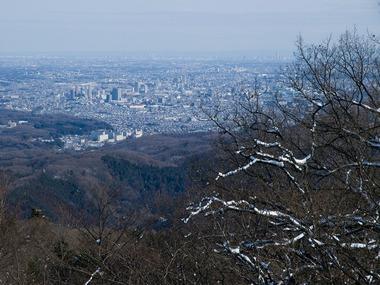 高尾山から都会を望む。