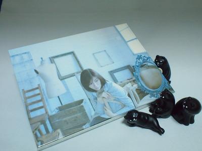 柴田淳『あなたと見た夢 君のいない朝』