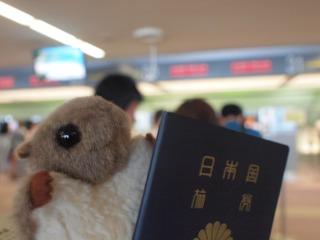 パスポートモモンガ。