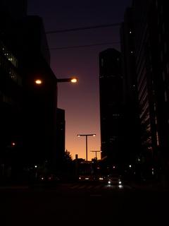 夕方、新宿にいた。