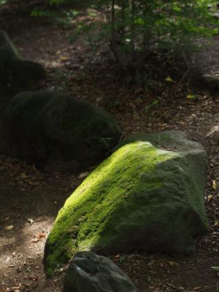 光射す岩。