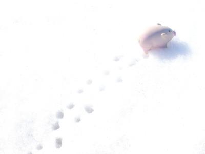 ぶたさんも雪が好き。