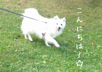 20141004_01