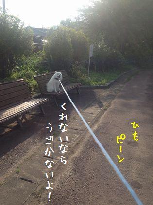 20140824 _07