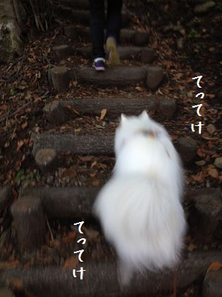 20141011_04