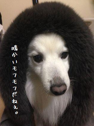20140113_03
