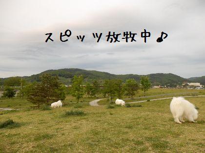 20140525_11