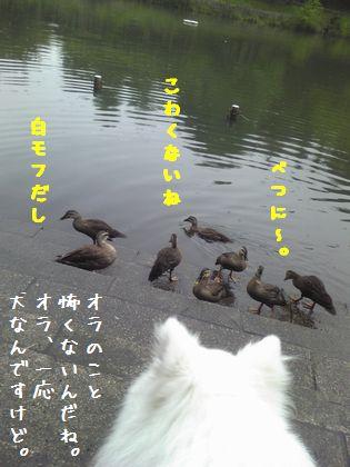 20140714_03