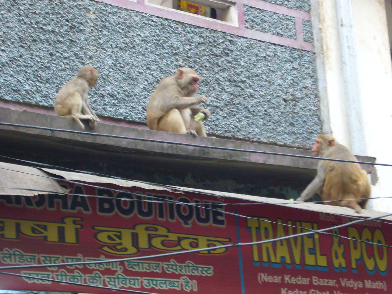India_201705_2_Varanasi (81)